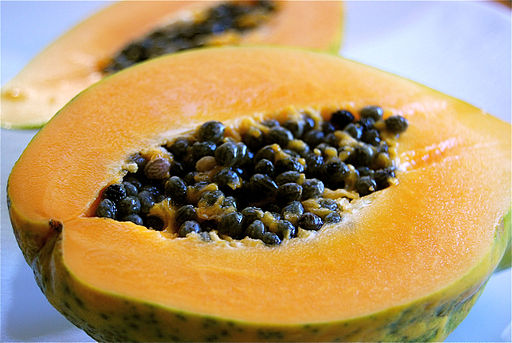 Transgenic Papaya