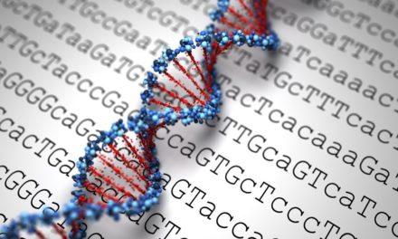 Is Genetic Testing Bad?